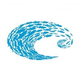 Стикер Decal Costa Blue Logo SM Schoolin
